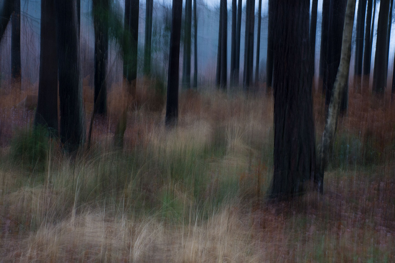 mario-haase-01-20129-3932